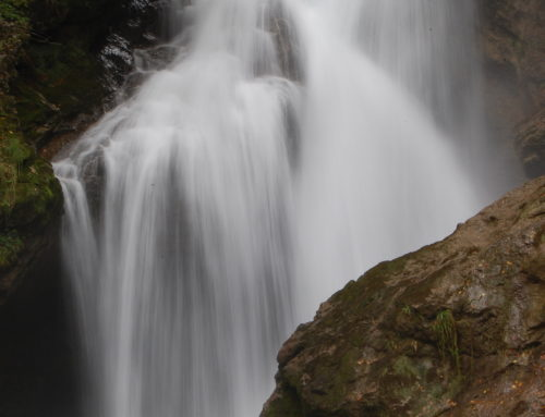 Vintgar Bled 3